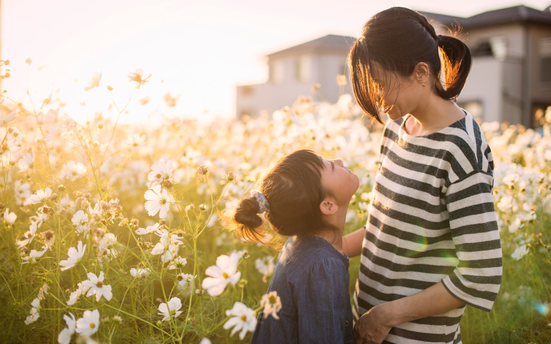 How Environmental Toxin Exposures Impact Your Fertility